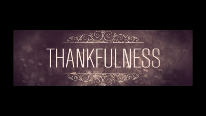 Thankfulness In Noah's Sacrifice